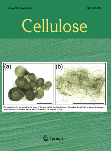 Cellulose Journal cover Dec 2015