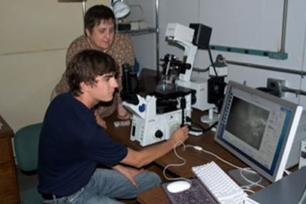 Two CLSF researchers working in the lab.